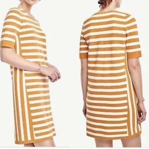 Ann Taylor Marigold Yellow Striped Shift Dress